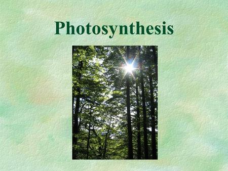 Photosynthesis. 4.1 How do living things get ATP? ATP is the energy carrier in living things – it is usable energy for the cell (chemical potential energy).