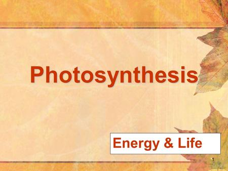 1 Photosynthesis Energy & Life. 2 Overview of Photosynthesis copyright cmassengale.