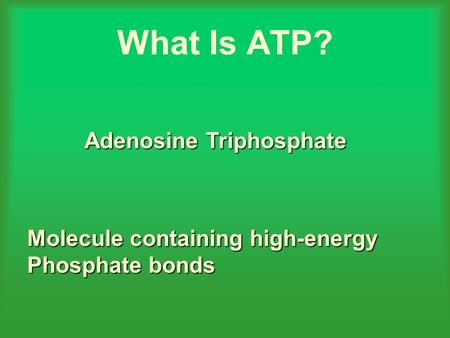 What Is ATP? Adenosine Triphosphate Molecule containing high-energy Phosphate bonds.