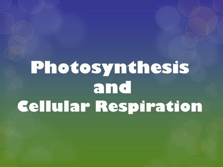 Photosynthesis and Cellular Respiration. ENERGY and LIFE  All living things need energy in order to carry out life processes.  Plants are called autotrophs.