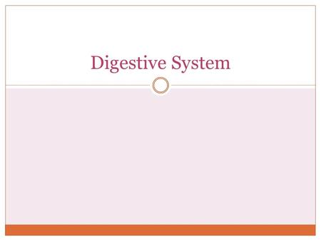 Digestive System. Functions Ingestion  Food enters digestive tract through mouth Mechanical Processing  Physical manipulation of solid food (by t0ngue.