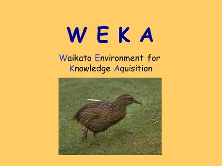 W E K A Waikato Environment for Knowledge Aquisition.