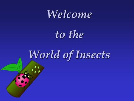 Welcome to the World of Insects. Importance of Insects to Agriculture - spread plant, human, and animal diseases PESTS – eat our foods - damage our crops.