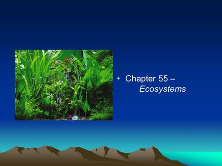 Chapter 55 – Ecosystems. Energy and Nutrient Dynamics Trophic structure / levels - feeding relationships in an ecosystem Primary producers - the trophic.