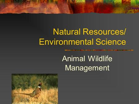 Natural Resources/ Environmental Science Animal Wildlife Management.