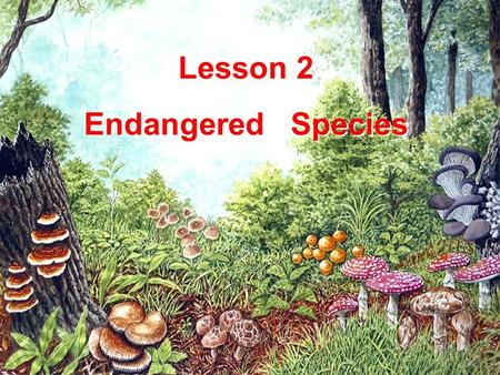 Lesson 2 Endangered Species.
