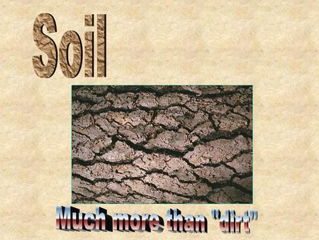 Soil is the growing medium for our food Without it we could not survive Soil purifies our waste Soil is home to plants and animals It may take up to 100.