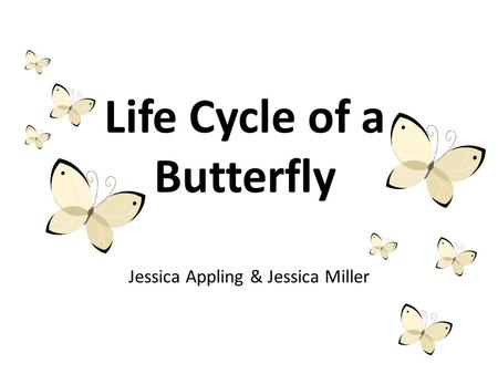 Life Cycle of a Butterfly Jessica Appling & Jessica Miller.