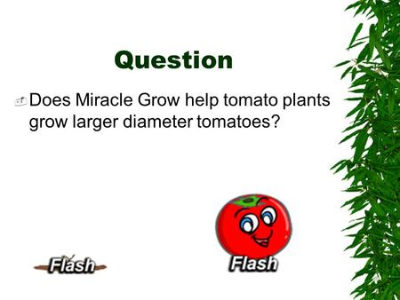 Question  Does Miracle Grow help tomato plants grow larger diameter tomatoes?