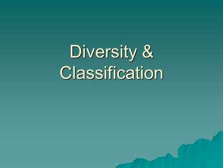 Diversity & Classification Objective A Students will define the criteria used for classifying organisms.