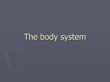 The body system. mouth The mouth is the first thing you use in the digestive system.