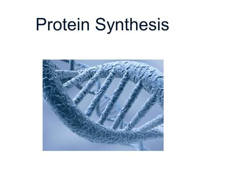 Protein Synthesis DNA.