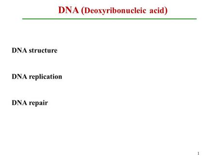 DNA ( Deoxyribonucleic acid ) 1 DNA structure DNA replication DNA repair.