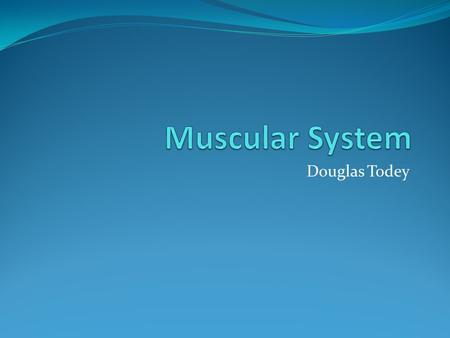 Douglas Todey. Functions The three main functions of the muscle system are to produce motion, provide stability, and generate heat The three different.