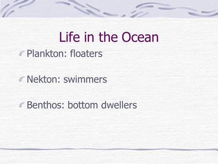 Life in the Ocean Plankton: floaters Nekton: swimmers Benthos: bottom dwellers.