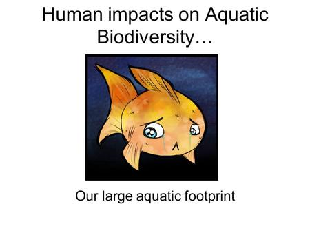 Human impacts on Aquatic Biodiversity… Our large aquatic footprint.