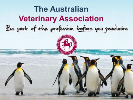 The Australian Veterinary Association. Presenter Background Name Role in the AVA Position Background ….. Contact email.