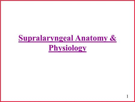 Supralaryngeal Anatomy & Physiology