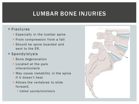  Fractures  Especially in the lumbar spine  From compression from a fall  Should be spine boarded and sent to the ER.  Spondylolysis  Bone degeneration.