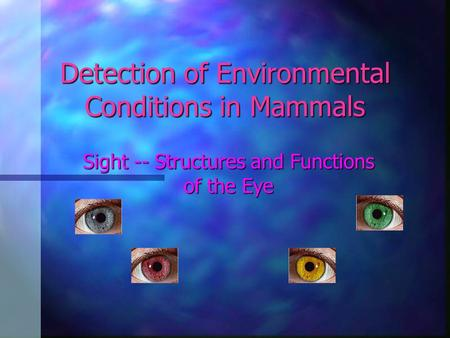 Detection of Environmental Conditions in Mammals Sight -- Structures and Functions of the Eye.