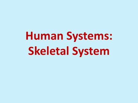 Human Systems: Skeletal System. Skeletal system Bones (hard, e.g. arms) and cartilage (soft, e.g. ear) 206 bones in humans Support and protection Helps.