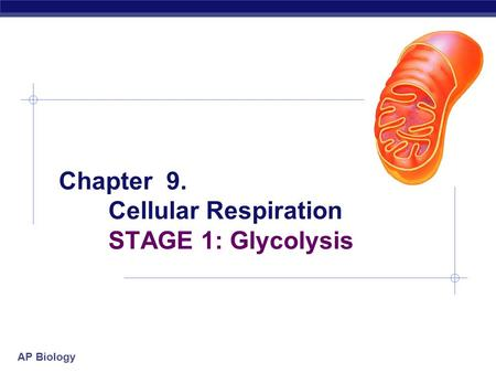 Ap biology essays on cellular respiration