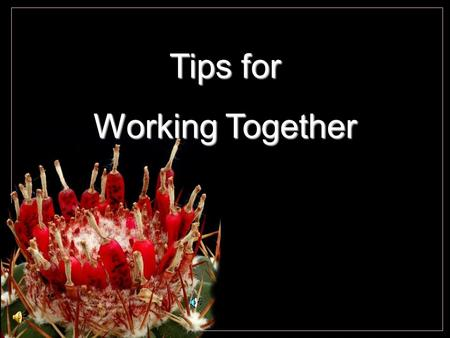 Tips for Working Together. Cochemiea poselgeri Take a 10-30 minutes walk every day. And while you walk, smile.