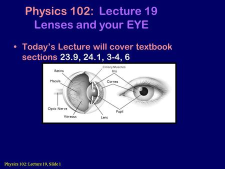 Physics 102: Lecture 19, Slide 1 Today's Lecture will cover textbook sections 23.9, 24.1, 3-4, 6 Physics 102: Lecture 19 Lenses and your EYE Ciliary Muscles.