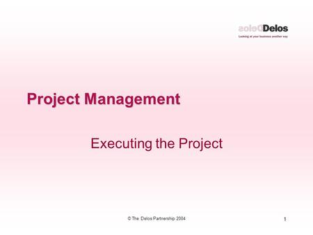1 © The Delos Partnership 2004 Project Management Executing the Project.