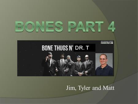 Jim, Tyler and Matt DR. T. Overview  Phases of bone development  Peak levels of bone  Dysfunctional levels of bone.