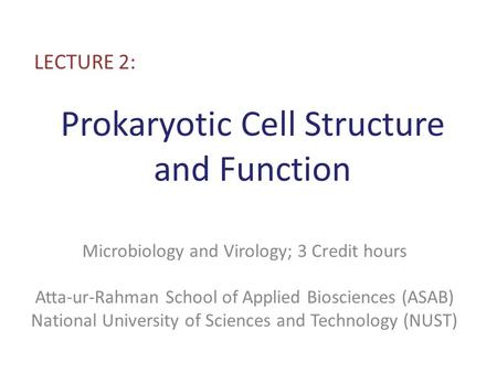 Prokaryotic Cell Structure and Function LECTURE 2: Microbiology and Virology; 3 Credit hours Atta-ur-Rahman School of Applied Biosciences (ASAB) National.