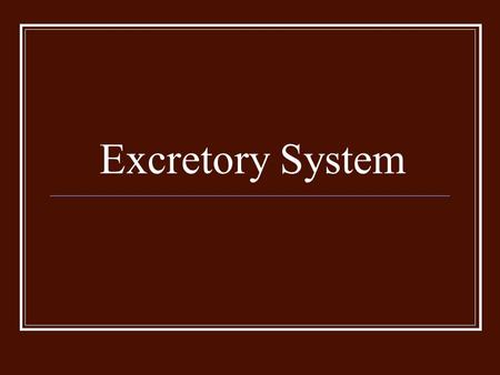 Excretory System. Functions The job of the excretory system is to rid the body of waste that result from metabolism. These are NOT the same wastes that.