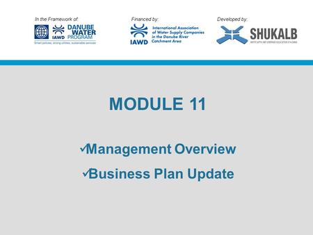 In the Framework of: Financed by: Developed by: MODULE 11 Management Overview Business Plan Update.