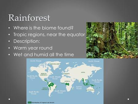 Rainforest Where is the biome found? Tropic regions, near the equator Description: Warm year round Wet and humid all the time.