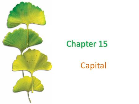 Capital. Chapter Outline ©2015 McGraw-Hill Education. All Rights Reserved. 2 Financial Capital And Real Capital The Demand For Real Capital The Relationship.