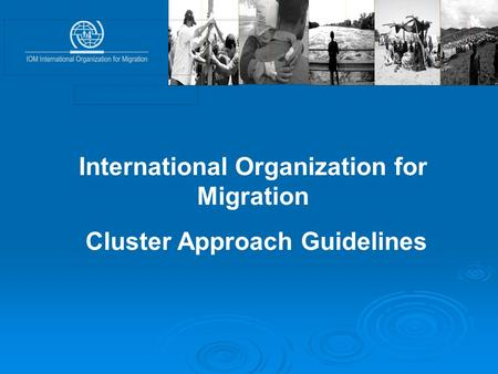 International Organization for Migration Cluster Approach Guidelines.