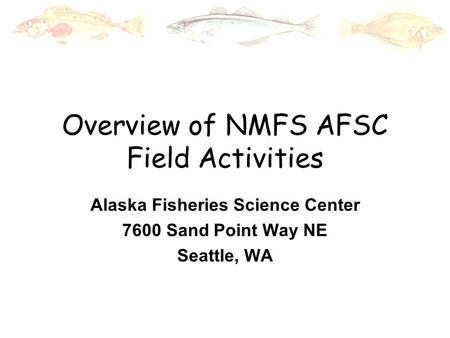 Overview of NMFS AFSC Field Activities Alaska Fisheries Science Center 7600 Sand Point Way NE Seattle, WA.