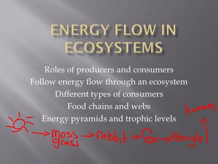 Roles of producers and consumers Follow energy flow through an ecosystem Different types of consumers Food chains and webs Energy pyramids and trophic.