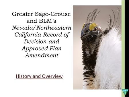 Greater Sage-Grouse and BLM's Nevada/Northeastern California Record of Decision and Approved Plan Amendment History and Overview.