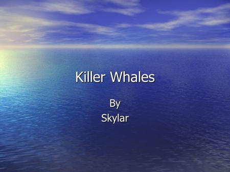 Killer Whales BySkylar. Facts about Killer Whales They can go up to 30 miles an hour. They can go up to 30 miles an hour. W hen calves are born they are.