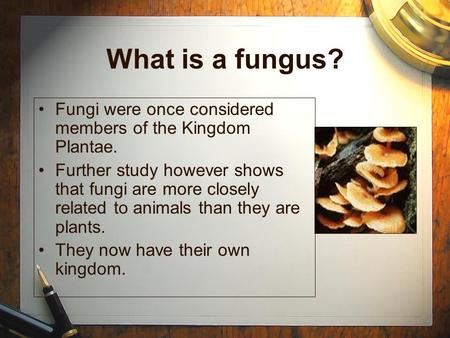 What is a fungus? Fungi were once considered members of the Kingdom Plantae. Further study however shows that fungi are more closely related to animals.