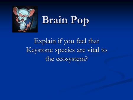 Brain Pop Explain if you feel that Keystone species are vital to the ecosystem?
