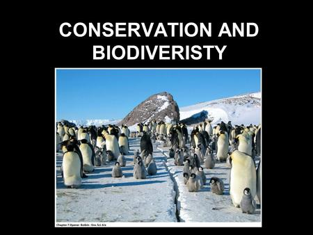 CONSERVATION AND BIODIVERISTY. BIODIVERISITY EVOLUTION SPECIATION MUTATIONSNATURAL SELECTION GEOGRAPHIC ISOLATION GENETIC DRIFT.
