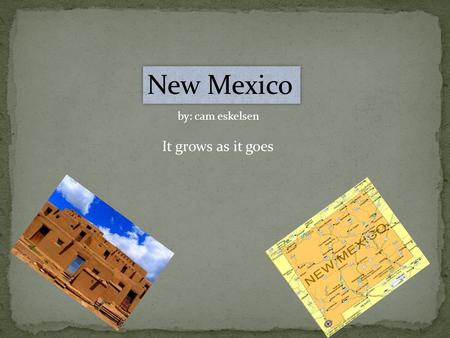 New Mexico by: cam eskelsen It grows as it goes. New Mexico state symbols State flower State bird is the chaparral State mammal State fish State butterfly.