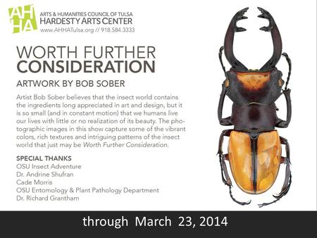 "Through March 23, 2014. Ground Beetle, green # 2 15 photos were taken and assembled to create this image 16"" x 24"" Printed on aluminum."