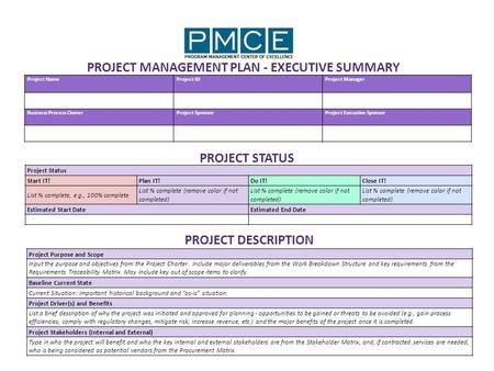 Project NameProject IDProject Manager Business Process OwnerProject SponsorProject Executive Sponsor PROJECT MANAGEMENT PLAN - EXECUTIVE SUMMARY PROJECT.