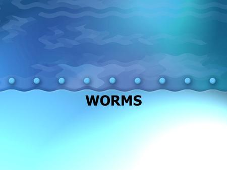 WORMS. Flatworms: soft, flattened worms carnivores, scavengers, or parasites –one opening for food and waste Respiration, Circulation, & Excretion – diffusion.