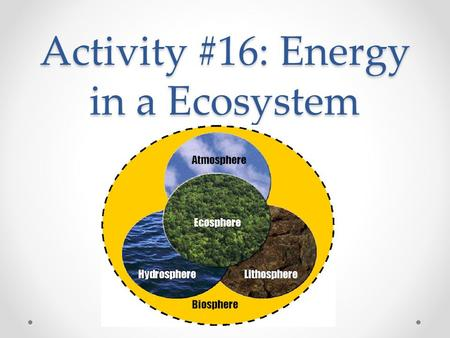 Activity #16: Energy in a Ecosystem. EQ How do different organisms get the energy they need to survive? How does energy move through an ecosystem? What.