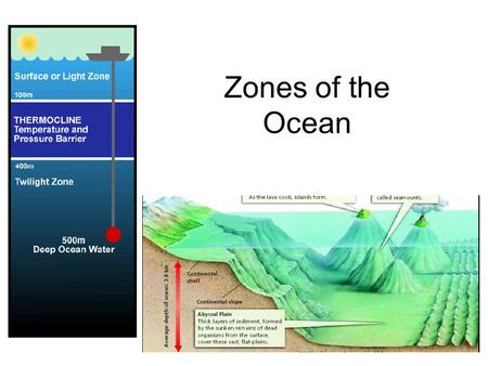 Zones of the Ocean. It's all just one big ocean!