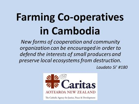 Farming Co-operatives in Cambodia New forms of cooperation and community organization can be encouraged in order to defend the interests of small producers.